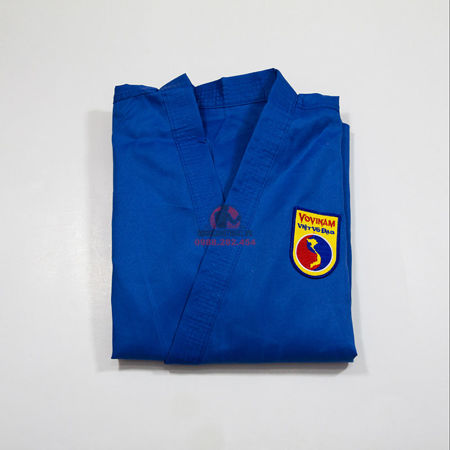Picture for category Vovinam